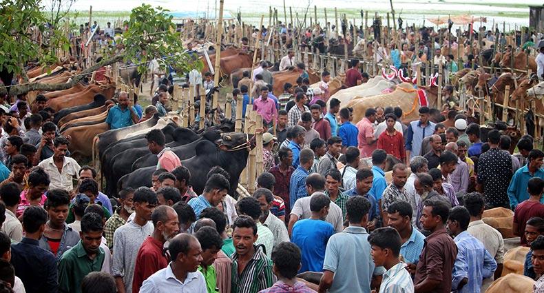 শেষ মুহূর্তের কেনা-বেচায় ব্যস্ত হাটগুলো