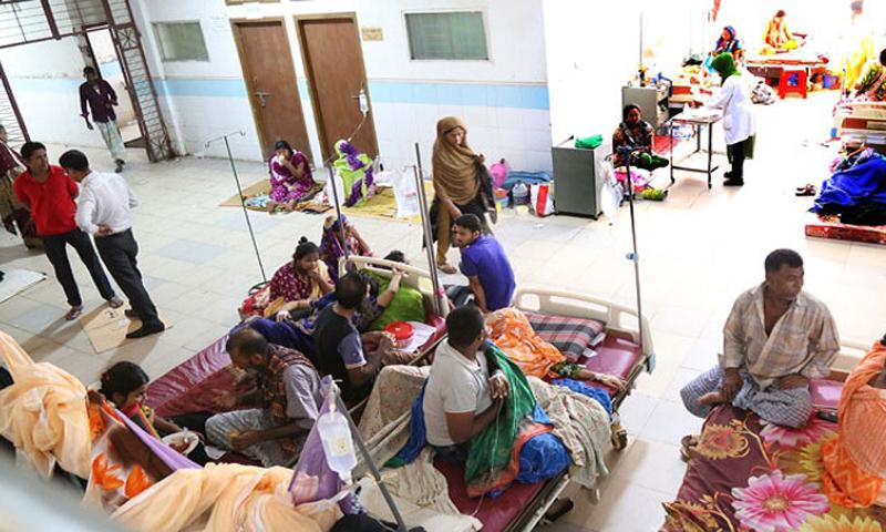 ডেঙ্গুতে ৬০ জনের মৃত্যু হয়েছে: স্বাস্থ্য অধিদপ্তর